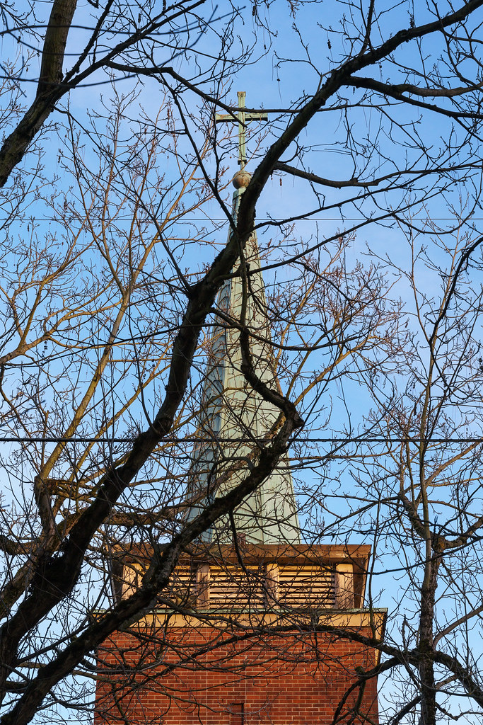 The steeple of Augustana Lutheran church in Portland, Oregon with tree branches in front