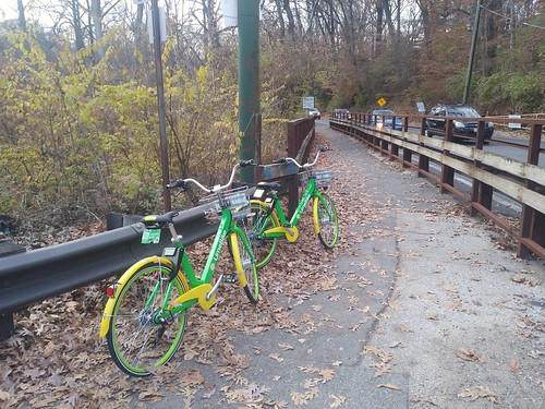 Dockless bicycle share bicycles (LimeBike) left on the Sligo Creek Trail, Montgomery County, Maryland