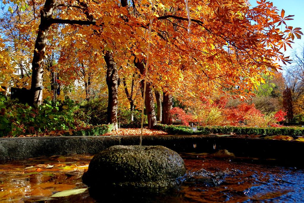 reflejos de otoño en el fontín