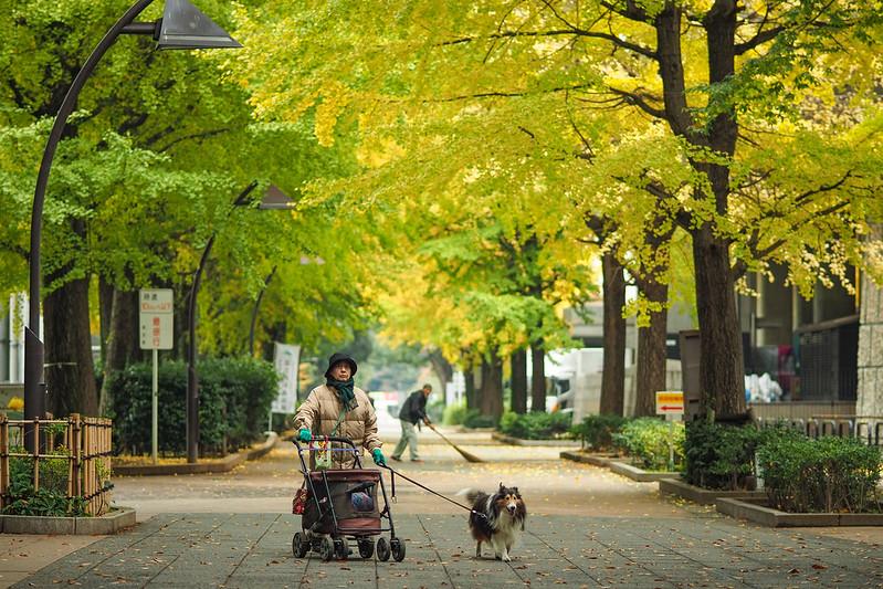 阿婆與阿牧|東京上野公園