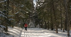 Photo-by-Todd-Zawistowksi-_-MyNorth-Media-_-Cross-Country-Ski-Trails-in-Sleeping-Bear-Dunes-900x473