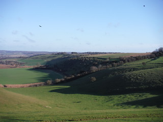 Streatley Warren (ridge in the SW corner)