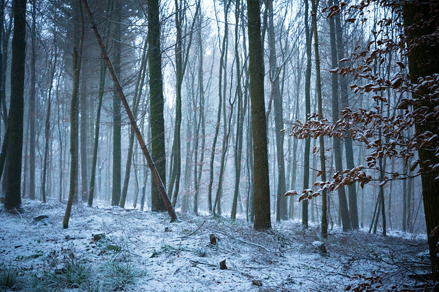 snow flurry, Fujifilm X-E2, XF27mmF2.8