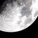 Moon, Kibworth, Leicestershire