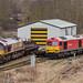 Class 66 66156 66106 60065 66101 DB Cargo._C240007