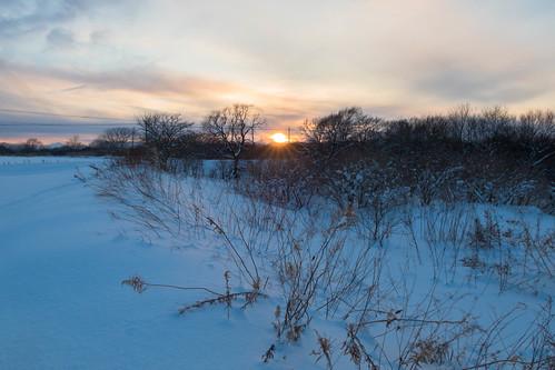 Sunset In Snow Hokkaido
