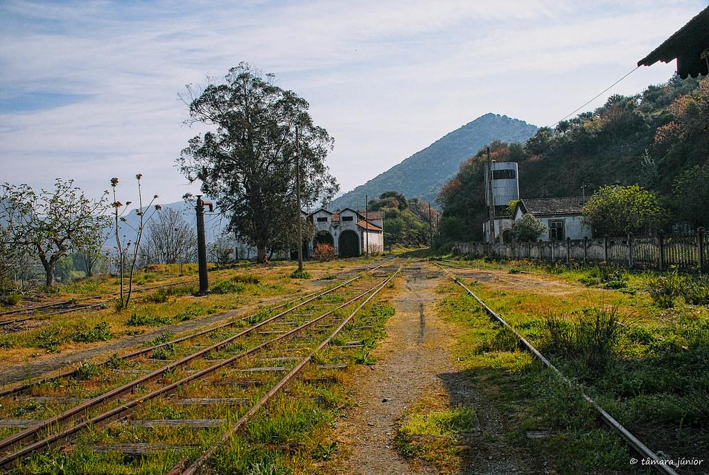 2009 - Viagem comboio Régua-Pocinho (Caminhada) 062