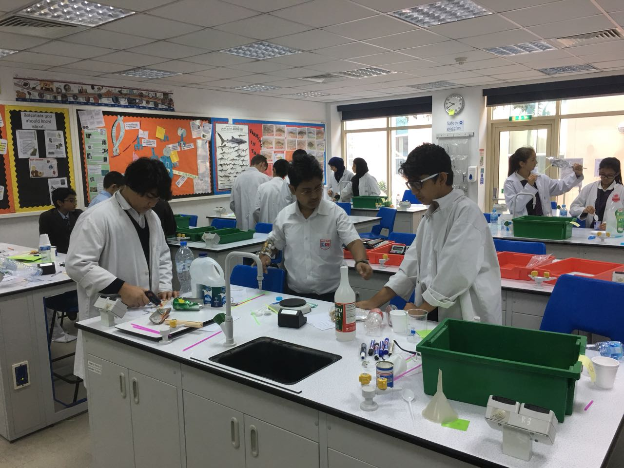 Golden Bunsen Science Competition