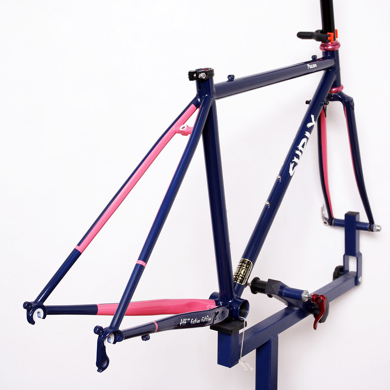 Surly / Pacer Frame Set Painted by Swamp Things.