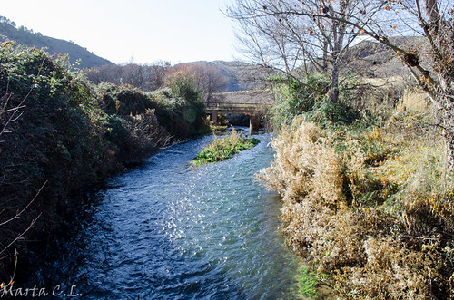 Río Jiloca