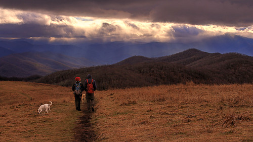 max patch north carolina at appalachian trail mountains winter