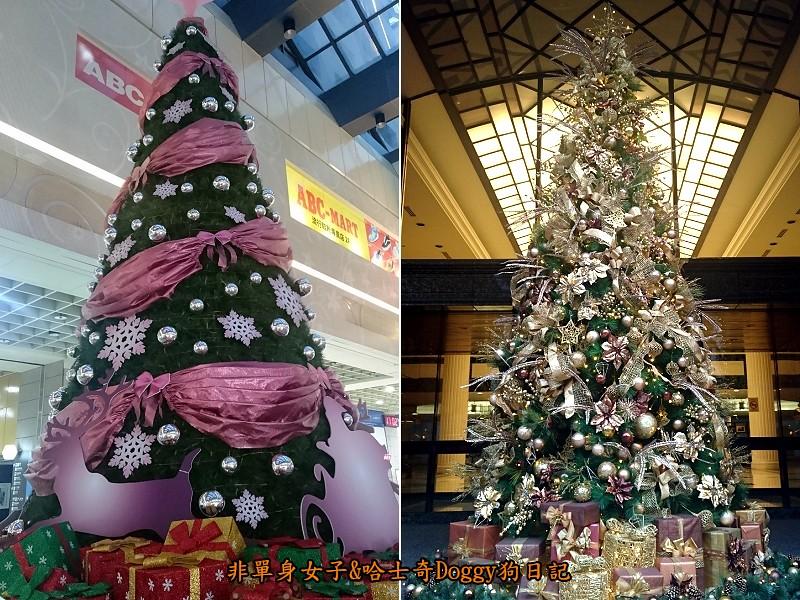 聖誕節02聖誕樹