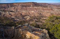 McCarty Trail (12-31-17)