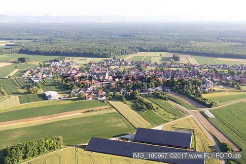 Niederlauterbach (0.97 km South-East) - IMG_100957