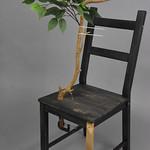 Tobias Fike; Item 109 - in SITu: Art Chair Auction