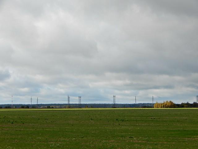 Зелёное поле в Тульской области | Green fields in Tula, Russia
