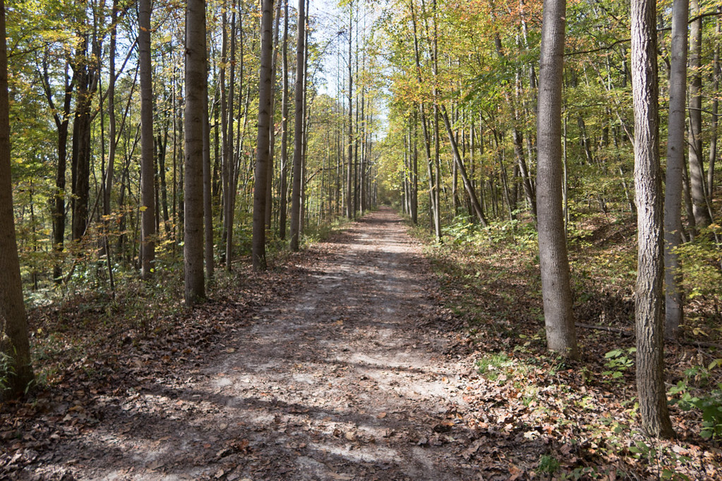Flat trails at Ohiopyle State Park