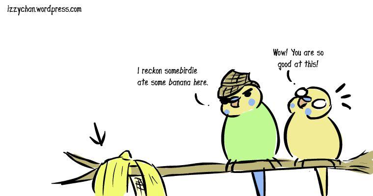 somebirdie ate a banana danger bird