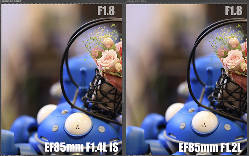 EF85mm F1.4L IS vs EF85mm F1.2L_12