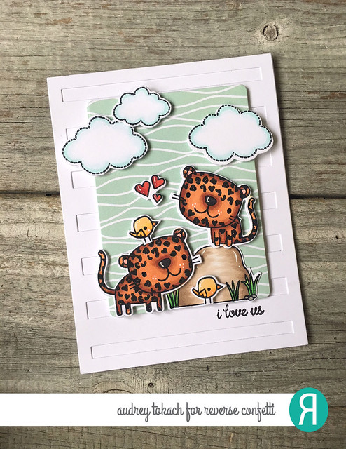 Leopards 1