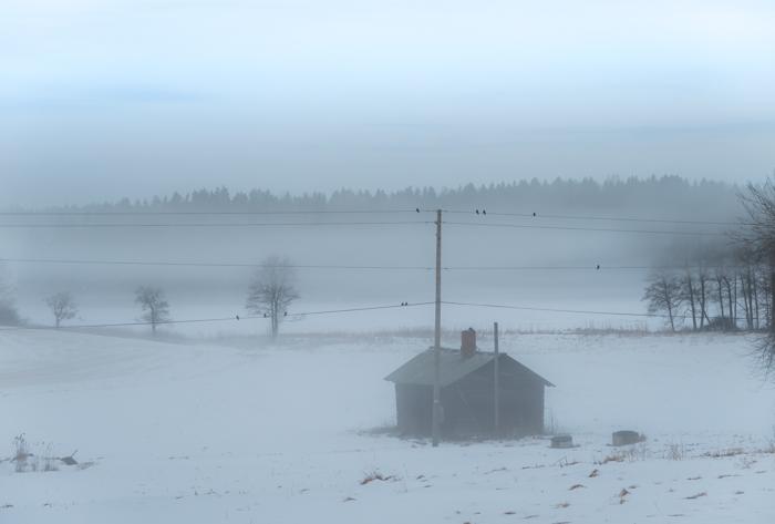 winter wonderland sumuinen järvimaisema maalaismaisema talvella rural lake view