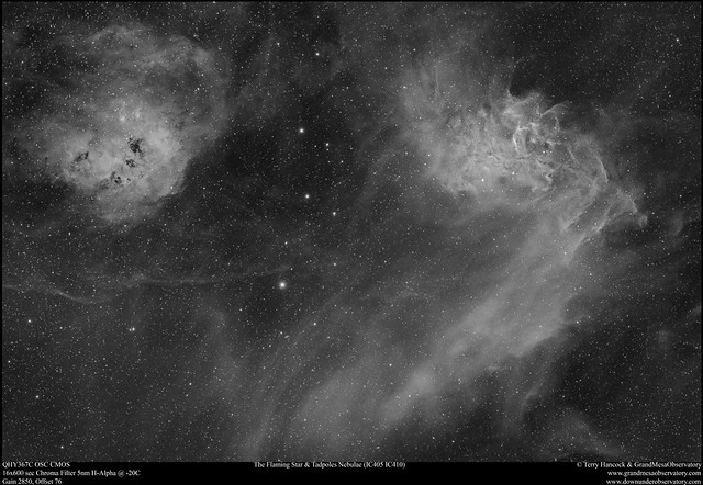 Flaming Star & Tadpoles Nebulae (IC405 & IC410) in H-Alpha