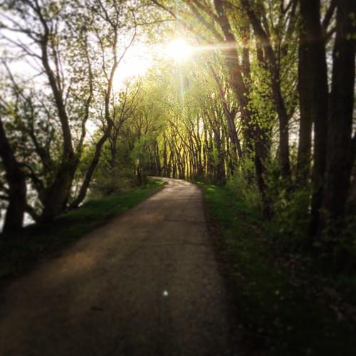 Blazing Star Trail