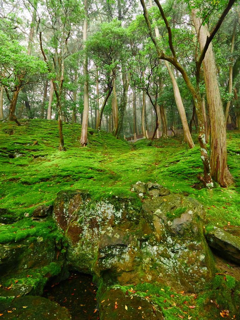 Kyoto Guide | Japan Cheapo