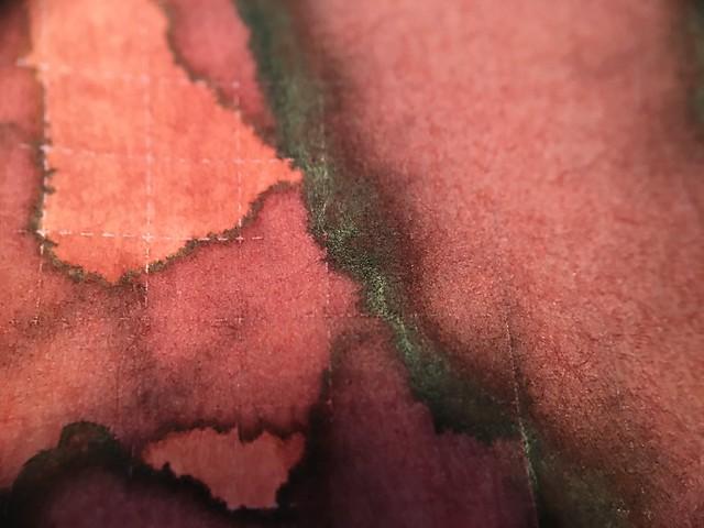 Ink Shot Review Franklin-Christoph Urushi Red @1901FC 12