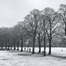 Winter Walthamstow
