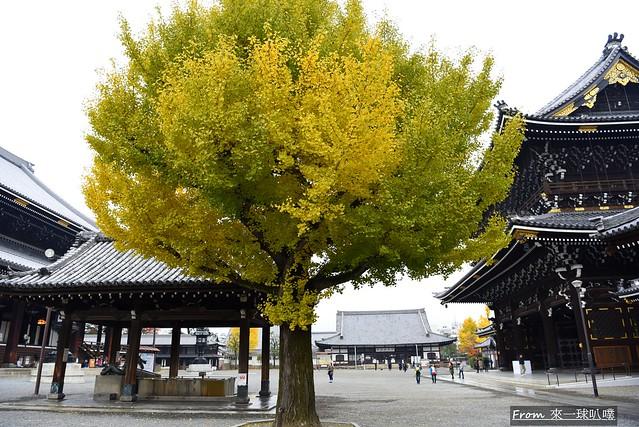 東本願寺27
