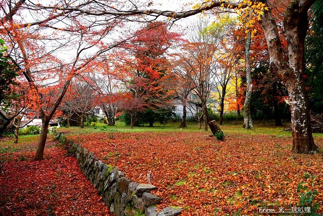 鷺森神社05
