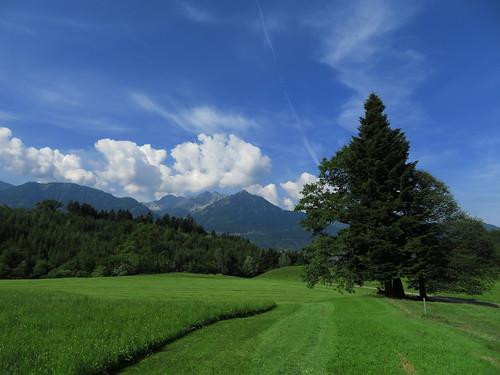 20170615 05 084 Jakobus Wolken Berge Wald Wiese Baum_K