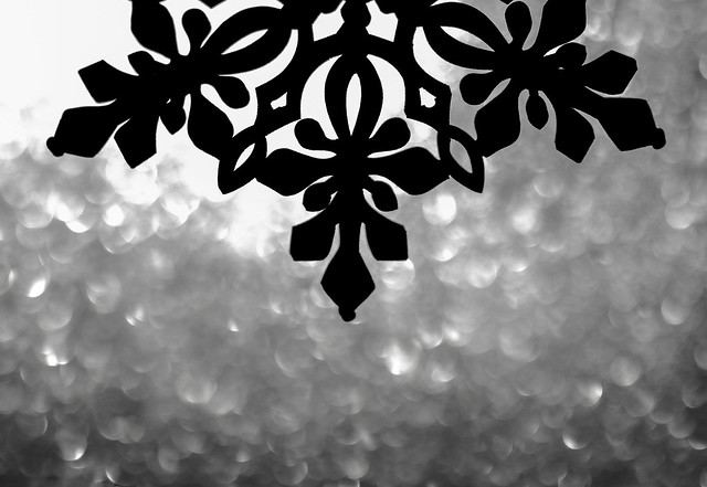 Happy Winter Solstice!, Canon EOS REBEL T3I, Sigma 70mm f/2.8 EX DG Macro EF