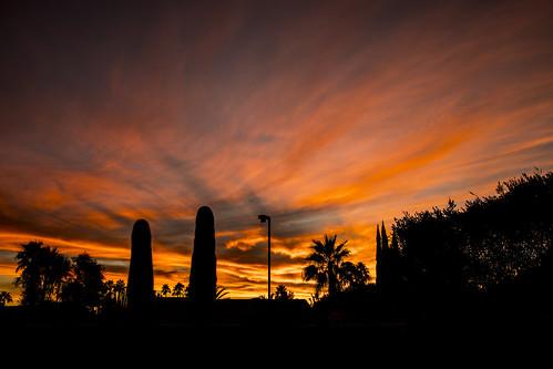 sunset arizonasunset arizona artcityartists colors scottsdale southwest cactus iatassi iatassiphoto