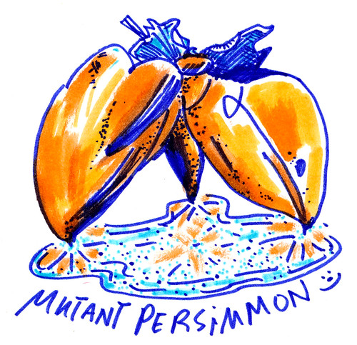 Sketchbook #110: The Last Persimmons - Markers