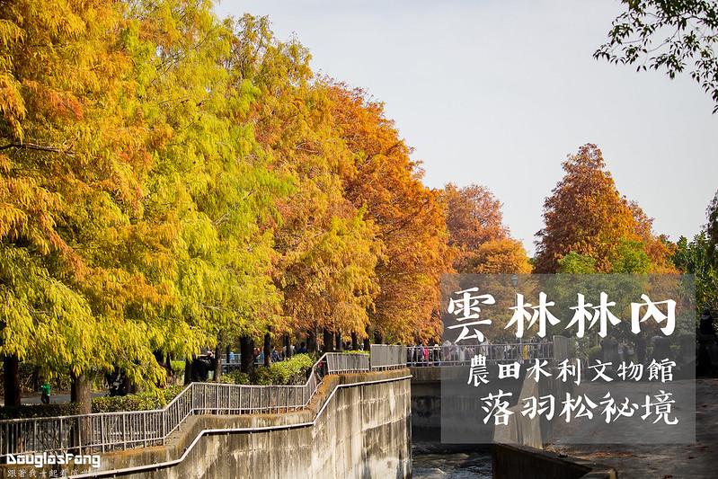 【遊記】雲林林內農田水利文物館落羽松祕境 (1)