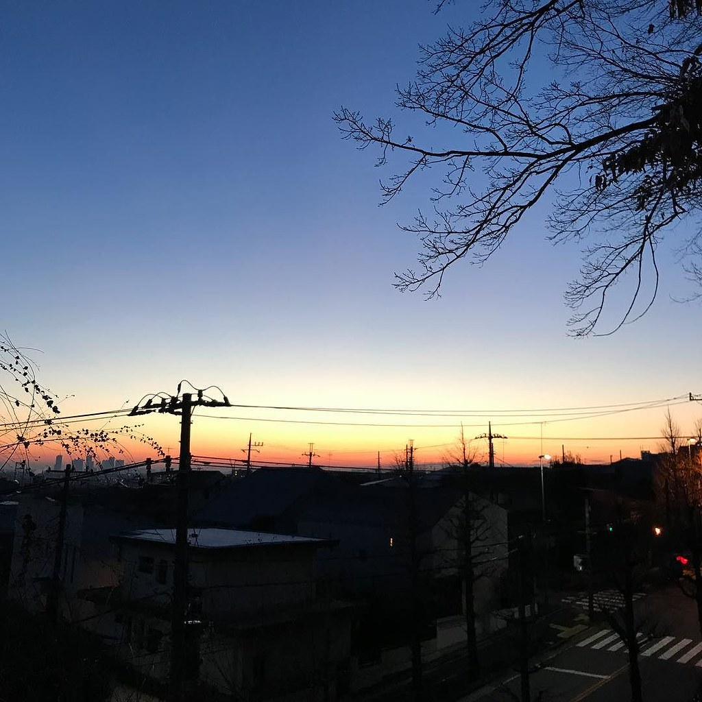 初日の出前の光景。