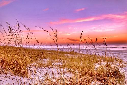 sand sea colorful sun oats water ocean beach sunrise hiltonheadisland southcarolina unitedstates
