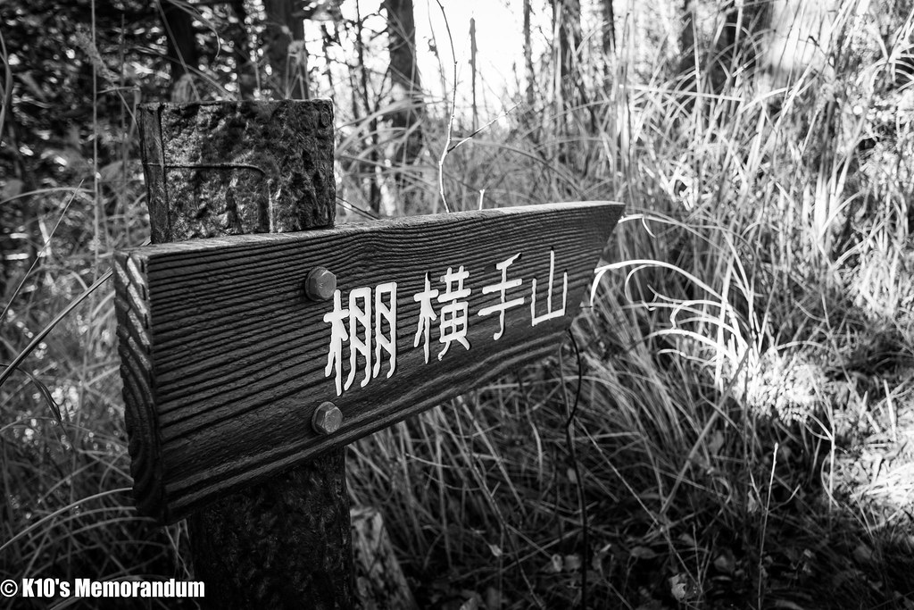 IMG_3187甲州高尾