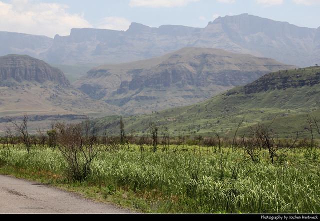 Injisuthi Valley, Drakensberg, South Africa
