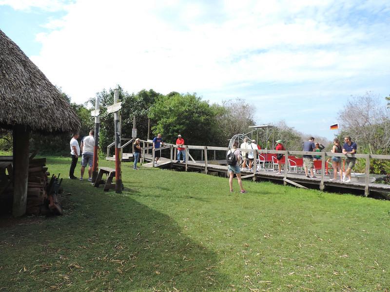 Everglades 13
