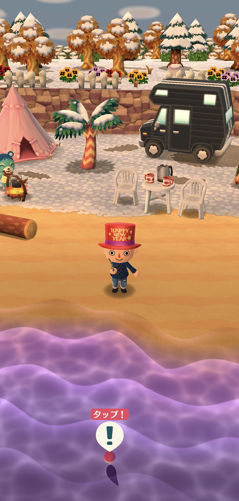 PocketCamp02