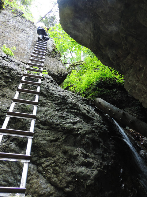 Dry White Gorge, Slovak Paradise National Park