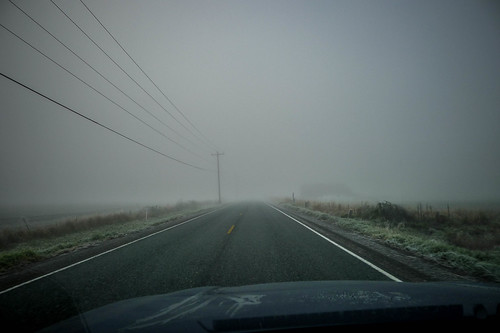 Skagit Valley Fog