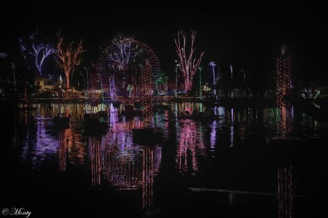 Phoenix Zoo,  Christmas Lights,  Arizona