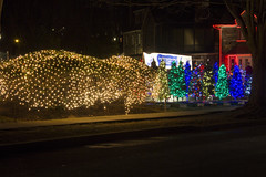 Holiday Decorations on Portal Drive 2017 (168)