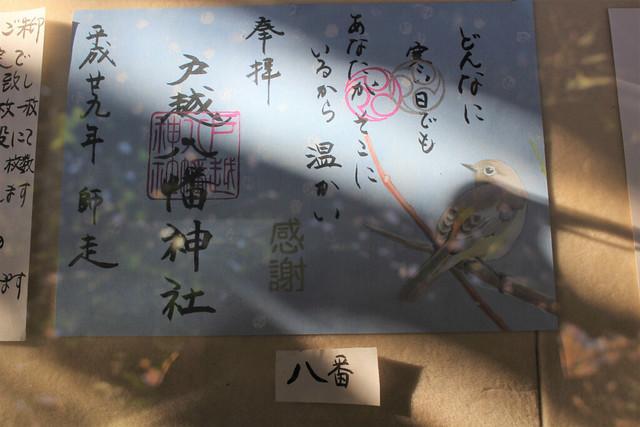 togoshihachimanjinja021