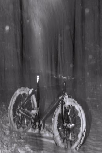 suomi sky snow salama photography puu pitkä pyörä polkupyörä cycle bike bicycle luonto light landscape long liike europe exposure expression intentionalcameramovement icm bokeh blur taivas tree talvi tie road lumi snowing sade