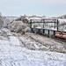 Whitmore Winter Wonderland